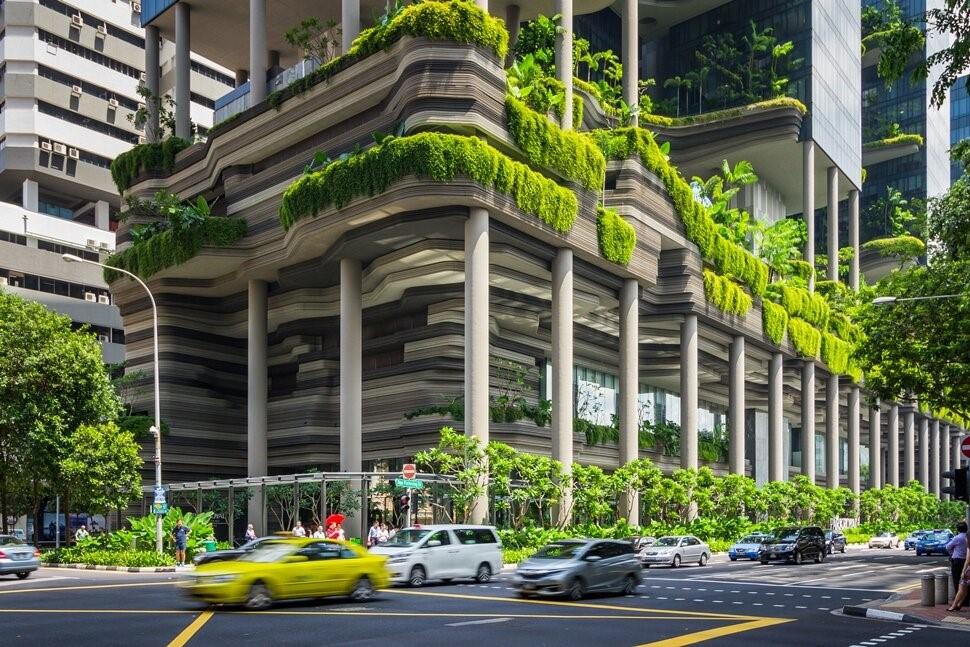 Зеленый фасад на зданиях Сингапура